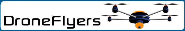 drone flyers logo